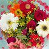 Buch of Flower