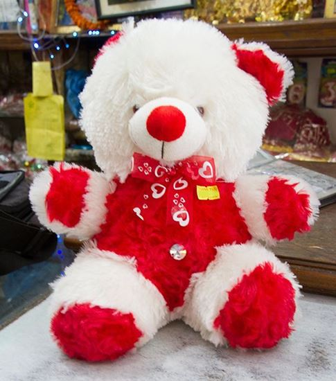 Red and White Teddy Bear